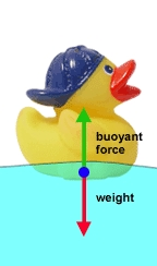 How Things Work (PHYS1055) / Revealing the Magic in ...